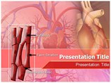 Cardiac Muscles Powerpoint Templates