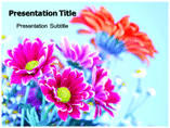 Flowers Gallery Powerpoint Templates