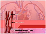 Striated Muscle PowerPoint Background
