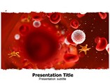 CLL PowerPoint Theme