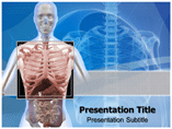 Thorax Anatomy Template PowerPoint