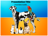 Pets powerpoint template