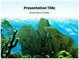 Marine Plants powerpoint template