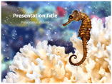 Sea Horse Drawing PowerPoint template