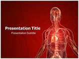 Vascular System powerpoint template
