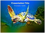 Turtle Beach  PowerPoint template