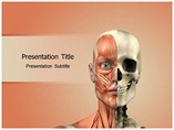PPT Templates for Face Anatomy