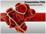 Coagulation Cascade PowerPoint Template