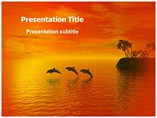 Animal powerpoint templates-Dolphin Beach
