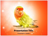 Animal powerpoint templates-Parrots