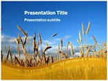 Powerpoint Templates on Wheat Grass