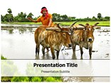 Agriculture PowerPoint(PPT) Templates