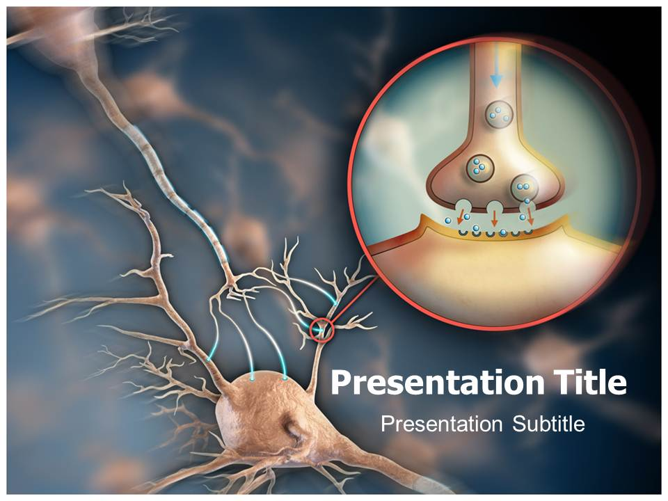 Neuron Synapse Medical powerpoint templates