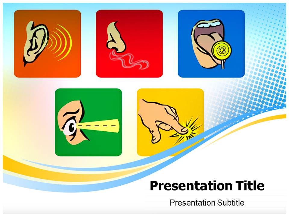 Five Senses Medical powerpoint templates