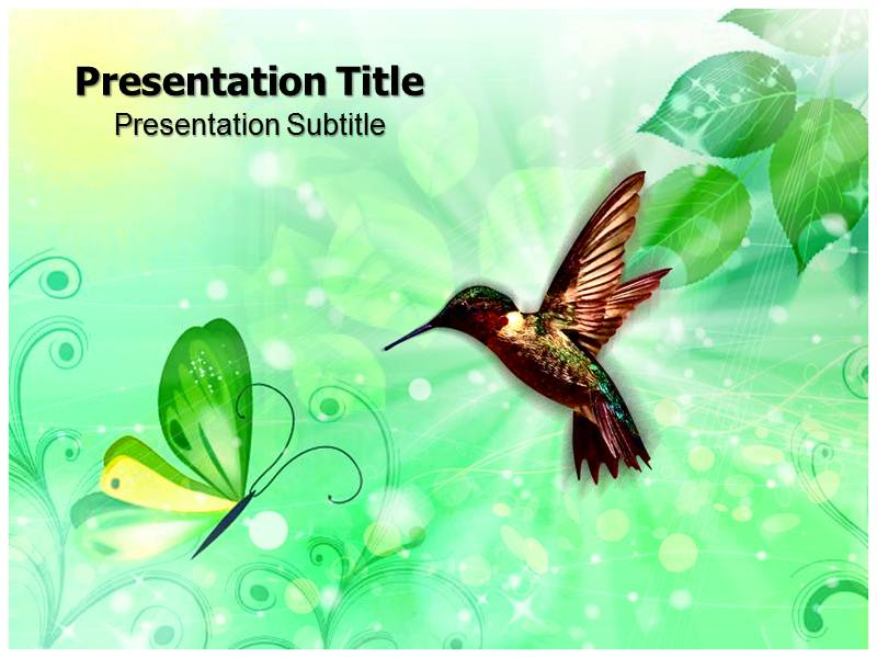 Leef with Bird Templates powerpoint templates