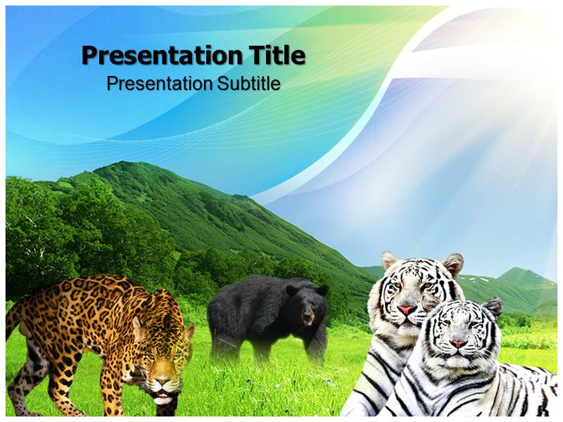 Carnivorus Animals Templates powerpoint templates