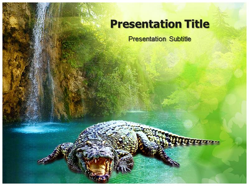 Carnivorus Crocodile Templates powerpoint templates