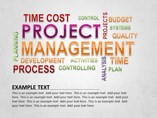 Project Management Diagram