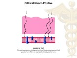 Microorganism Medical & Biology Toolkit powerpoint templates