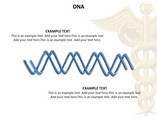 Nucleic Acid Medical & Biology Toolkit powerpoint templates