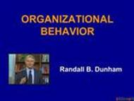 ORGANIZATIONAL BEHAVIOR  powerpoint presentation
