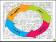 Product Life Cycle PPT powerpoint presentation