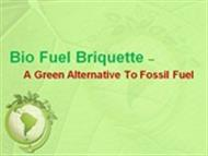 Bio Fuel Briquette – A Green Alternative To Fossil Fuel   powerpoint presentation