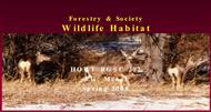 Forestry & Society Wildlife Habitat powerpoint presentation