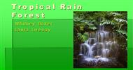 Tropical Rain Forest powerpoint presentation