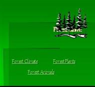Forest and animals powerpoint presentation
