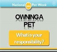 OWNING A PET -What is your responsibility? powerpoint presentation