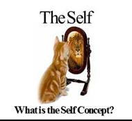 THE SELF : What is the Self Concept? powerpoint presentation