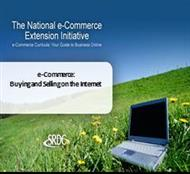 e-Commerce: Buying and Selling on the Internet powerpoint presentation