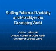 Shifting Patterns of Morbidity and Mortality in the Developing World powerpoint presentation