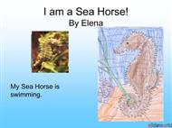 Ocean Animals powerpoint presentation